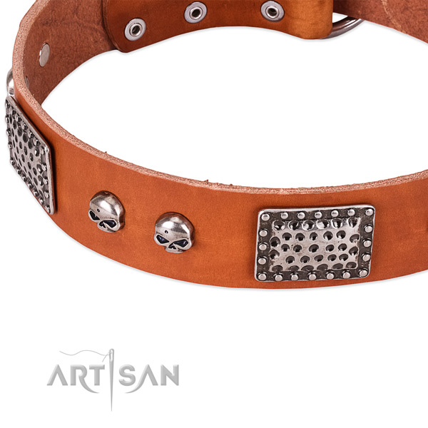 Corrosion proof adornments on natural genuine leather dog collar for your pet