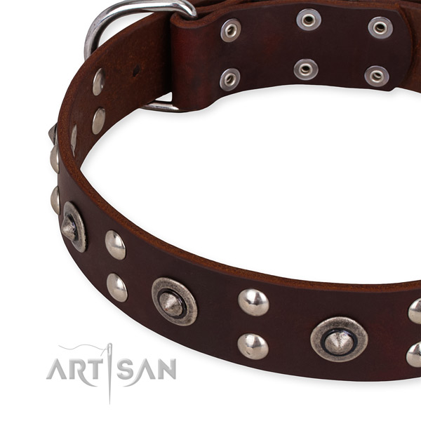 Full grain leather collar with rust-proof fittings for your lovely four-legged friend