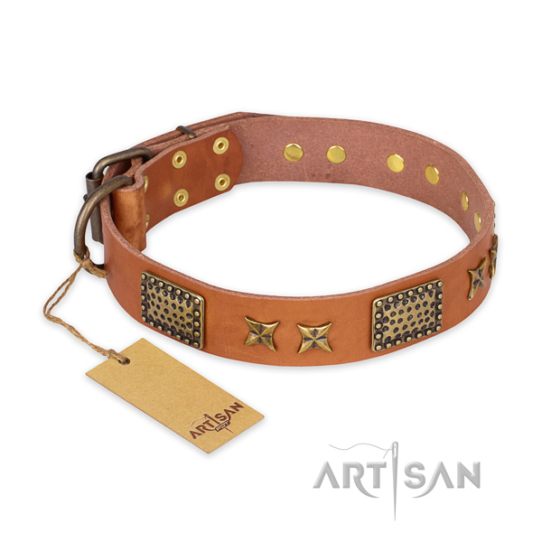 Trendy leather dog collar with rust resistant hardware