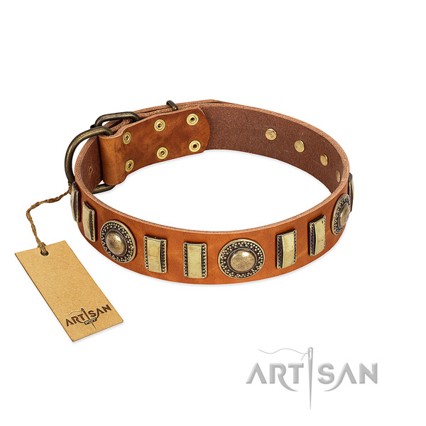Exceptional full grain genuine leather dog collar with durable traditional buckle