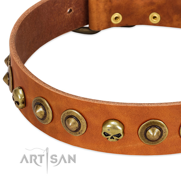 Exceptional embellishments on full grain leather collar for your pet