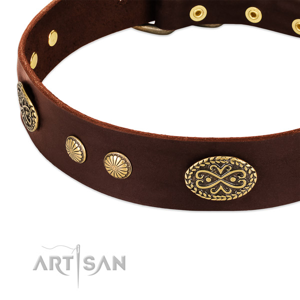 Strong embellishments on leather dog collar for your canine