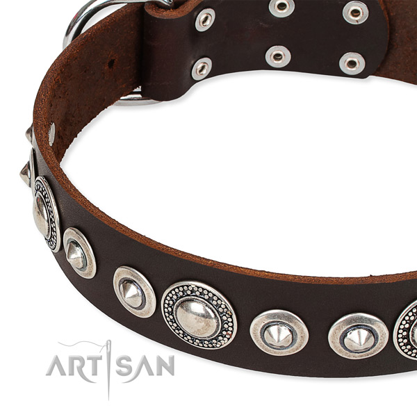 Comfy wearing decorated dog collar of durable full grain genuine leather
