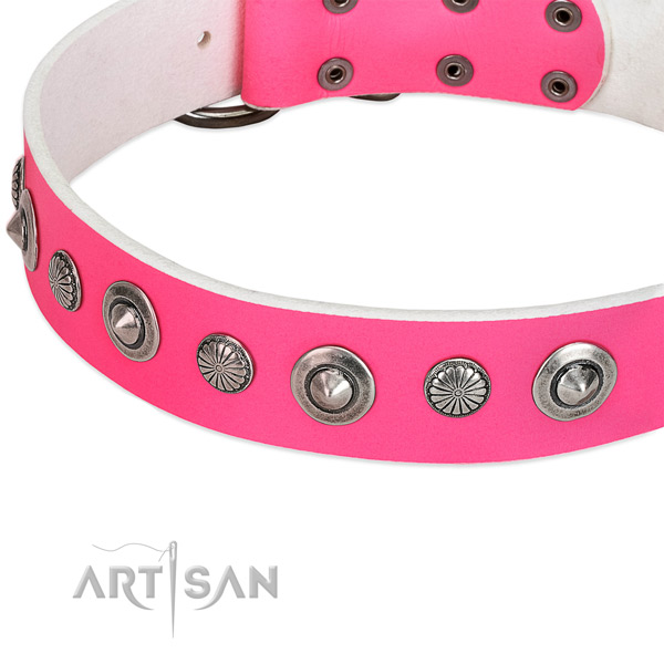 Natural leather collar with corrosion proof D-ring for your attractive pet