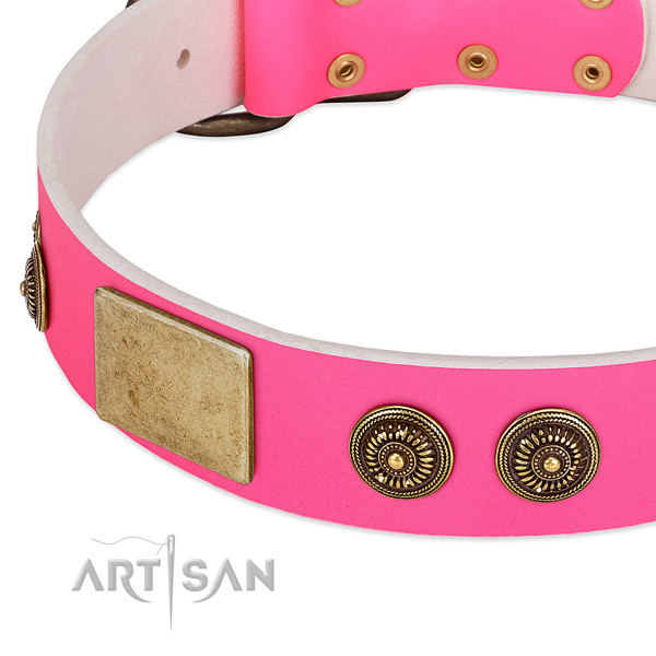 Stylish design dog collar handcrafted for your impressive canine