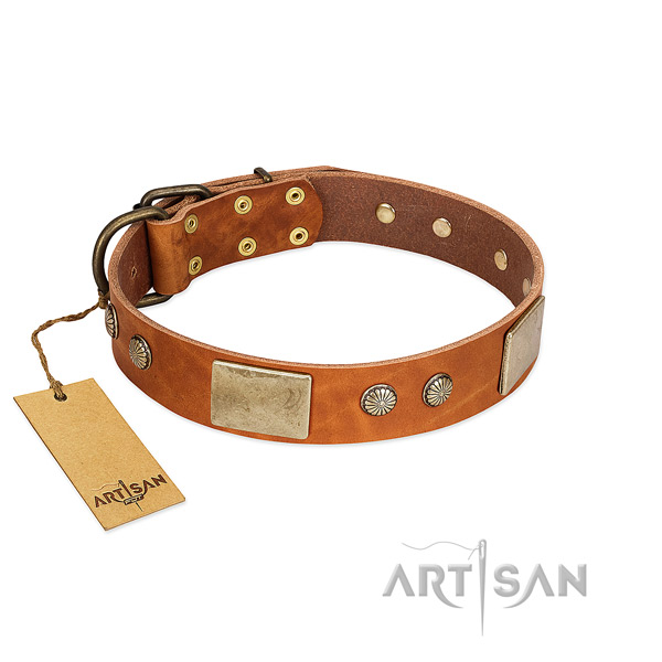 Easy to adjust full grain genuine leather dog collar for stylish walking your doggie