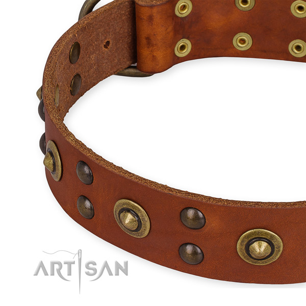 Full grain genuine leather collar with durable D-ring for your lovely pet