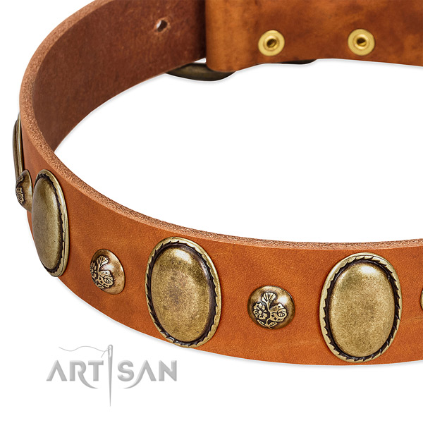 Full grain natural leather dog collar with remarkable decorations