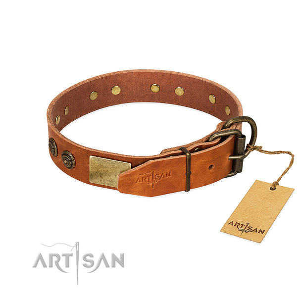 Rust-proof traditional buckle on full grain leather collar for walking your doggie
