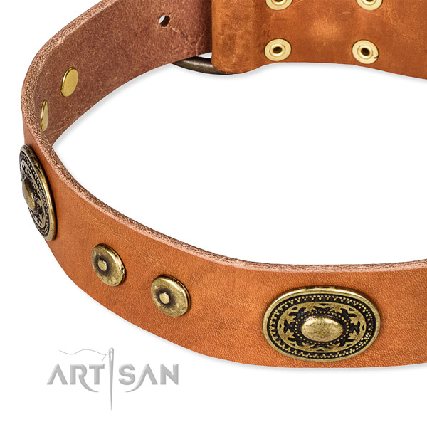 Full grain leather dog collar made of gentle to touch material with adornments