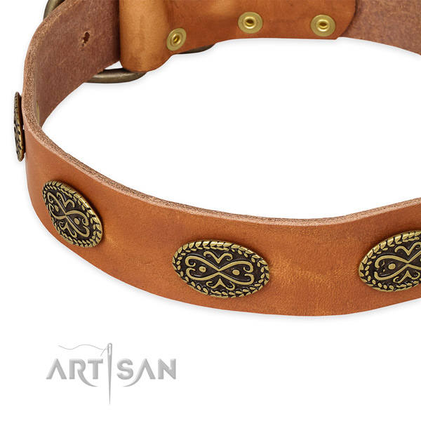 Extraordinary full grain leather collar for your stylish doggie