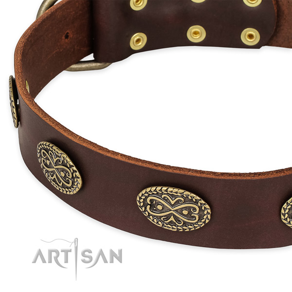 Amazing leather collar for your stylish doggie