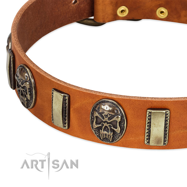 Strong studs on leather dog collar for your dog