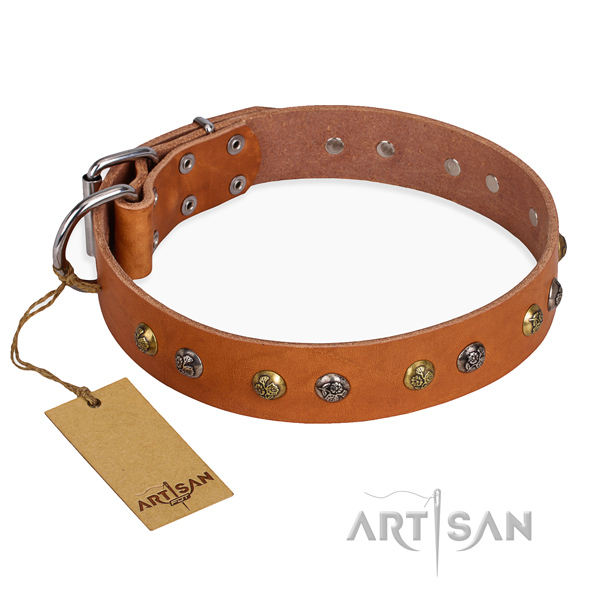 Fancy walking stylish design dog collar with strong buckle