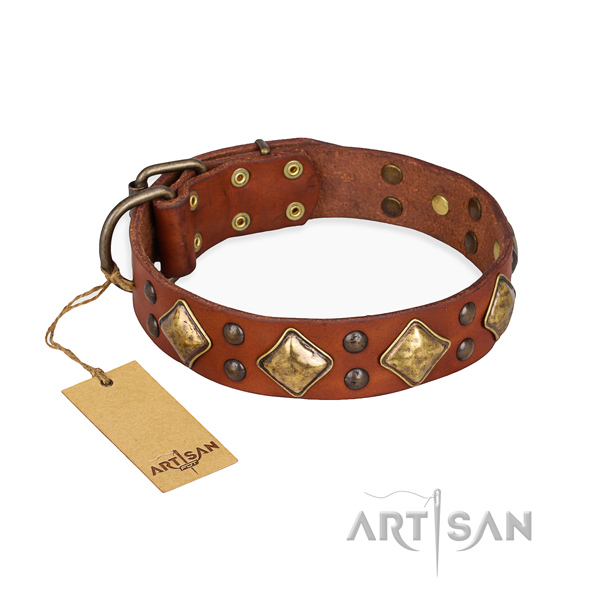 Everyday walking inimitable dog collar with rust resistant fittings