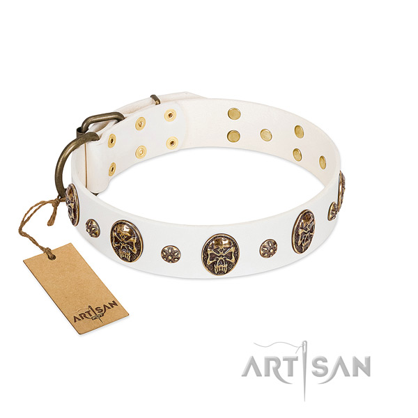 Trendy full grain leather collar for your canine