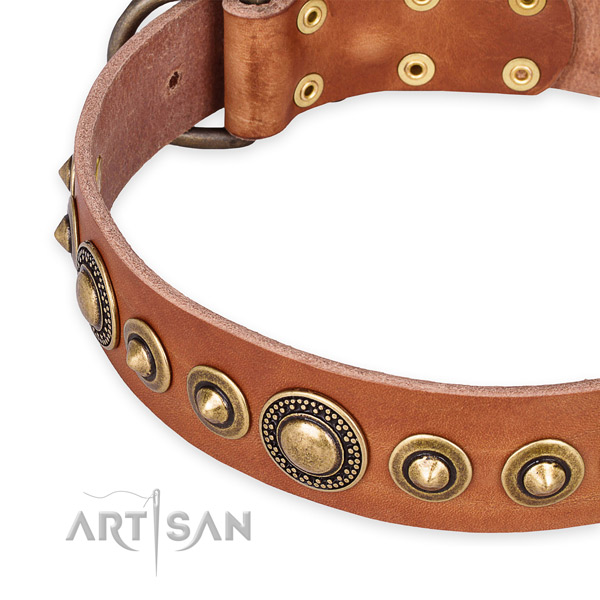 High quality full grain natural leather dog collar made for your impressive pet