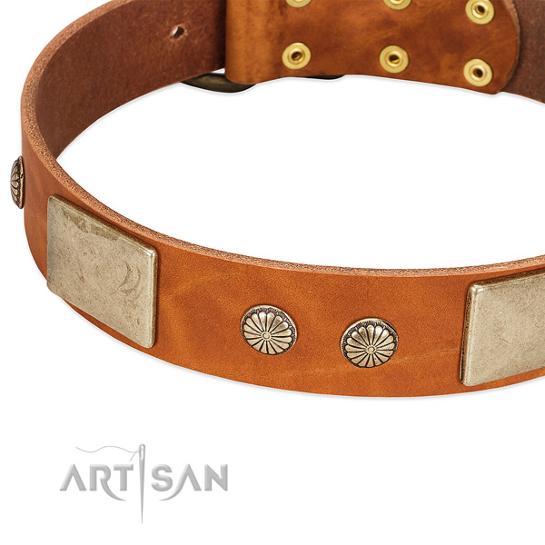 Corrosion resistant D-ring on leather dog collar for your pet