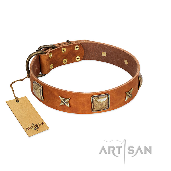 Significant full grain genuine leather collar for your four-legged friend