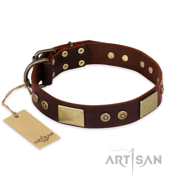 Inimitable full grain leather dog collar for everyday walking