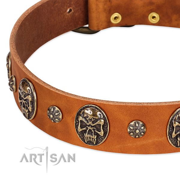 Strong studs on natural genuine leather dog collar for your dog