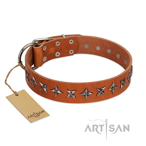 Daily walking dog collar of fine quality genuine leather with decorations