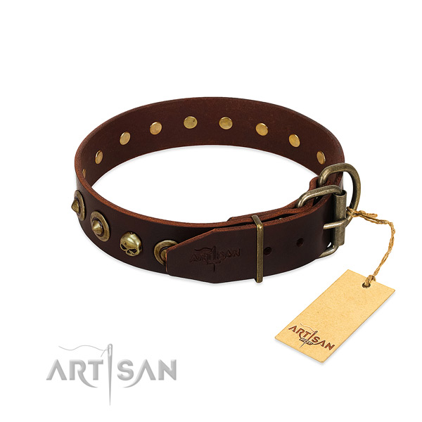 Natural leather collar with extraordinary adornments for your four-legged friend