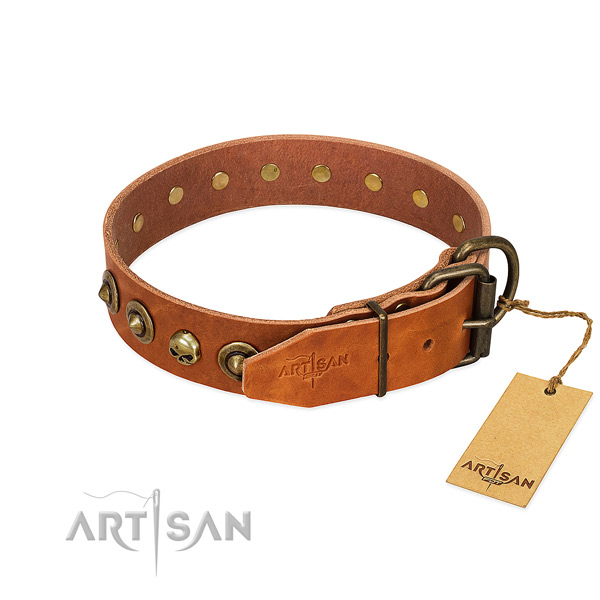 Genuine leather collar with remarkable decorations for your four-legged friend