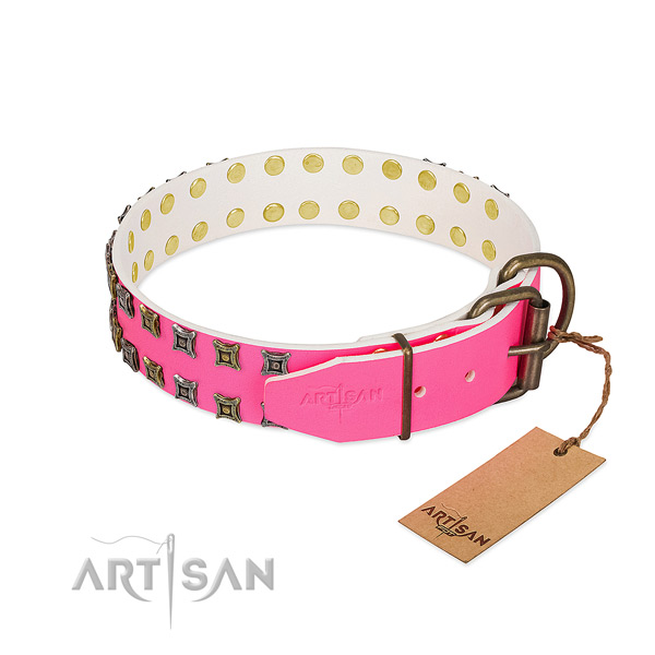 Leather collar with extraordinary decorations for your dog