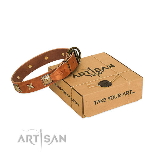 Perfect fit full grain leather collar for your attractive dog