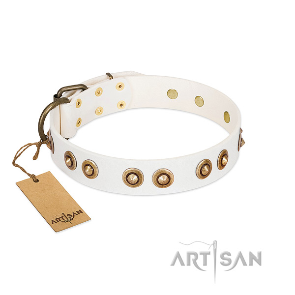 Studded genuine leather collar for your pet
