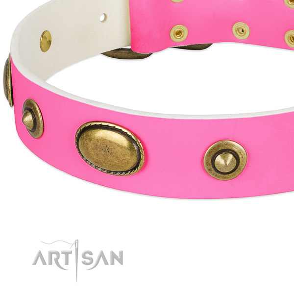 Reliable fittings on natural leather dog collar for your four-legged friend