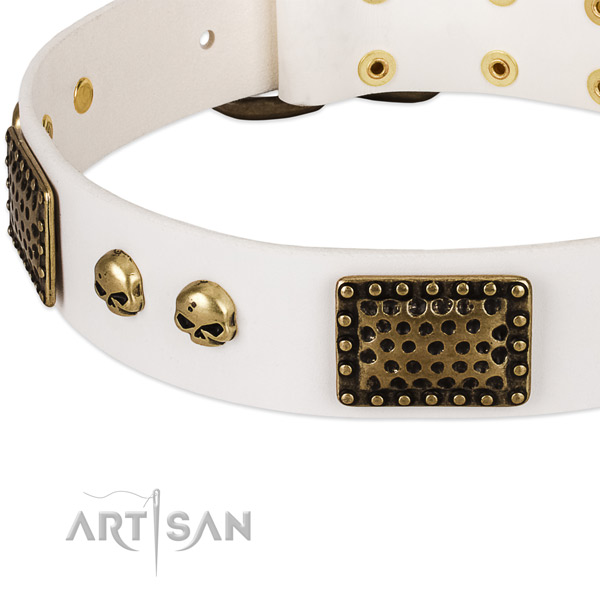 Rust resistant studs on full grain genuine leather dog collar for your doggie