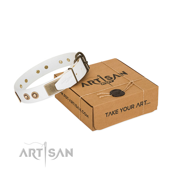 Rust-proof studs on natural genuine leather dog collar for your pet
