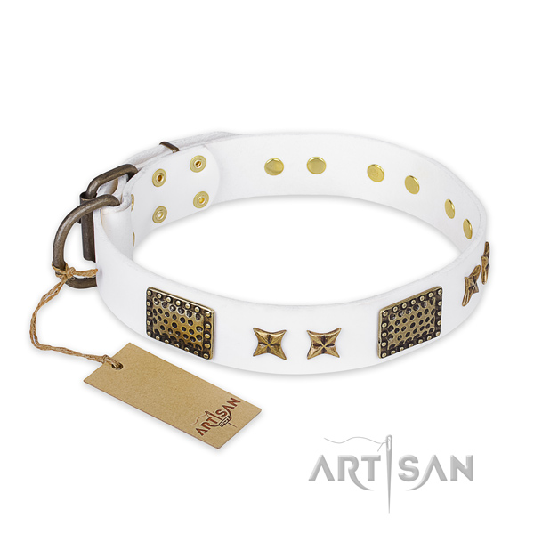 Convenient full grain natural leather dog collar with corrosion proof fittings