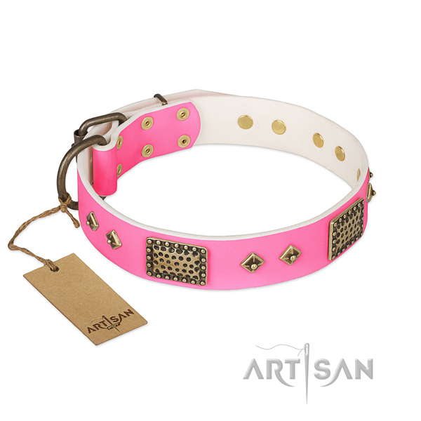 Easy to adjust genuine leather dog collar for walking your four-legged friend