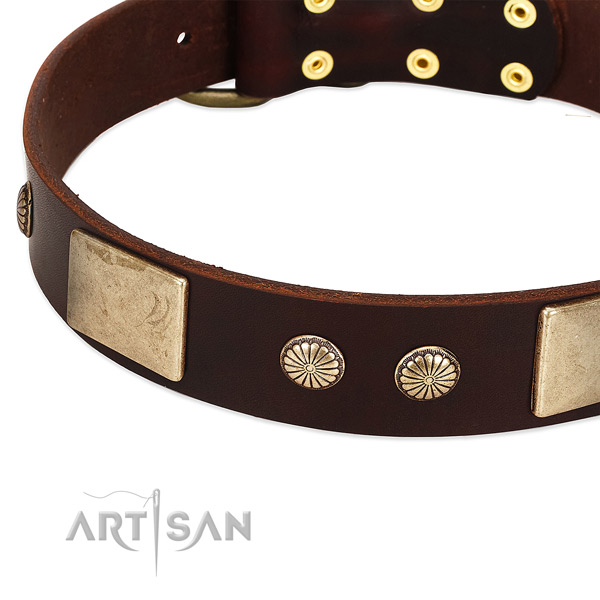 Rust-proof fittings on full grain leather dog collar for your doggie