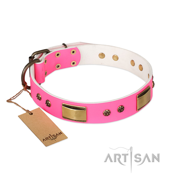 Awesome leather collar for your four-legged friend