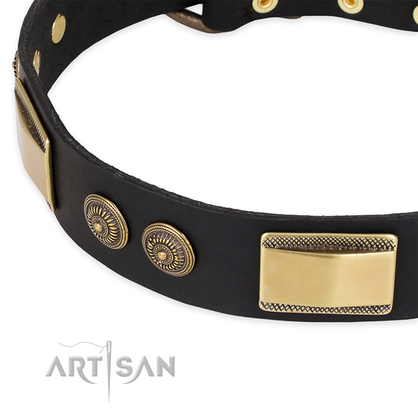 Remarkable genuine leather collar for your stylish four-legged friend