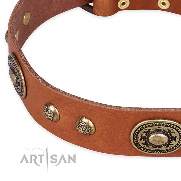 Studded full grain leather collar for your attractive pet