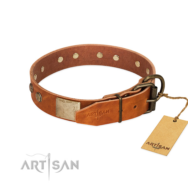 Rust-proof adornments on handy use dog collar