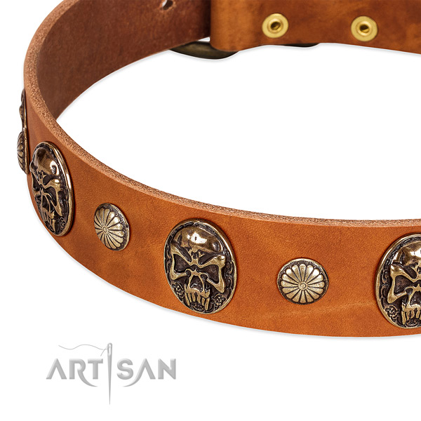 Rust resistant hardware on full grain genuine leather dog collar for your doggie