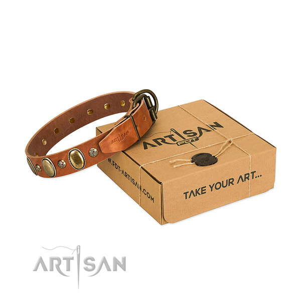 Top quality natural leather dog collar with rust resistant buckle