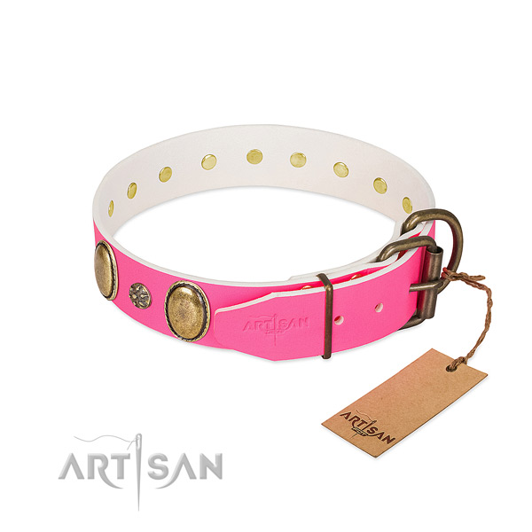 Reliable genuine leather dog collar with embellishments