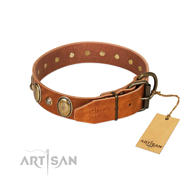 Handcrafted natural leather dog collar with rust-proof fittings