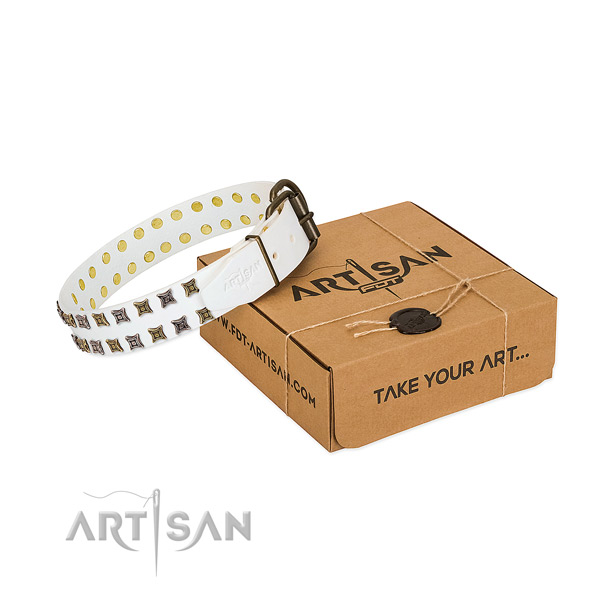Full grain natural leather collar with extraordinary studs for your doggie