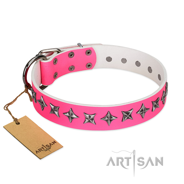 Top quality full grain genuine leather dog collar with extraordinary studs