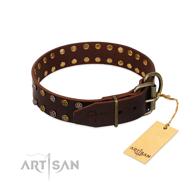 Handy use leather dog collar with incredible embellishments