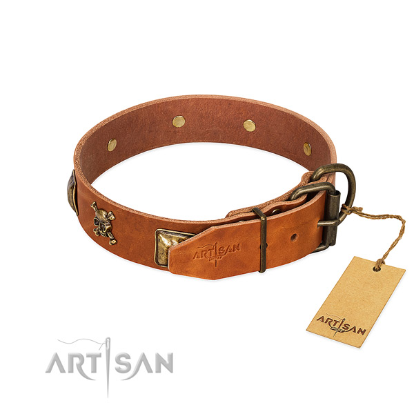 Impressive full grain natural leather dog collar with rust-proof studs