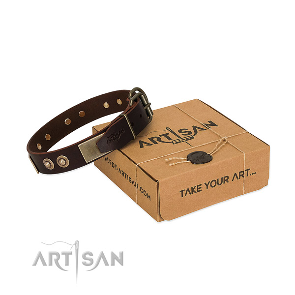 Rust resistant adornments on dog collar for everyday use